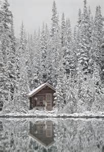 Stay In A Cabin In The Woods Stay In A Cabin In The Woods In The Snow Places