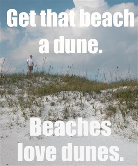 Funny Beach Memes - 1000 images about beachrn and i want to go to there on