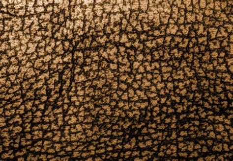brown patterned commercial carpet textile fabric material textures paper backgrounds