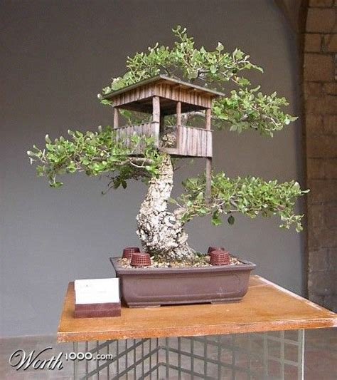 miniature tree houses ideas to mesmerize you bored art