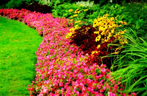 Flower Lawn And Garden Show Iowa Flower Lawn Garden Show Rj Promotions Landscaping Ideas Flowers Homelk