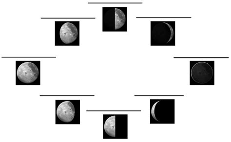 blank moon phase diagram phases of moon blank calendar template 2016