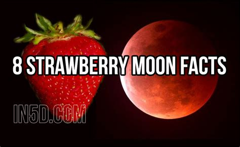 full strawberry moon 8 strawberry moon facts in5d esoteric metaphysical and