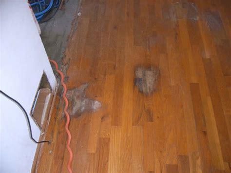 bend wood flooring gurus floor