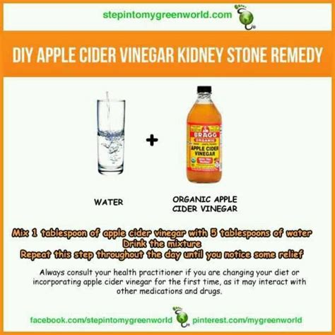 Kidney Detox Remedies by 33 Best Kidney Stones Images On Health Kidney