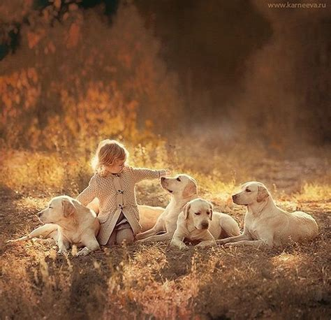 photographer captures magical moments  children  animals dogs kids cute animals