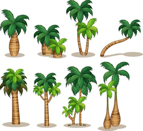 palm tree svg palm free vector download 299 free vector for commercial