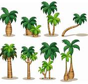 Palm Free Vector Download 299 For Commercial