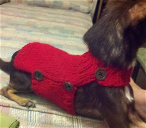free pattern for dog coat with legs ravelry side button dog sweater pattern by alisha hansen