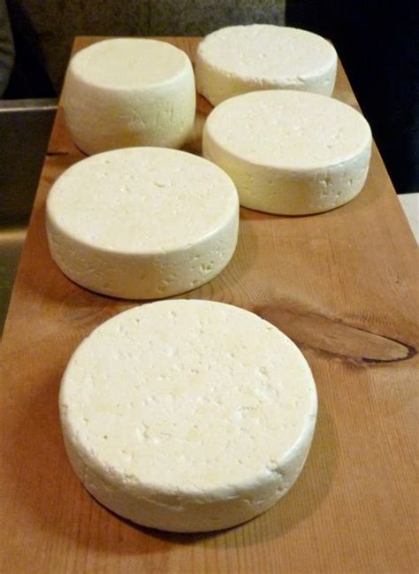 How To Make Goat Milk Cottage Cheese cheese how to make cheese and goat milk on