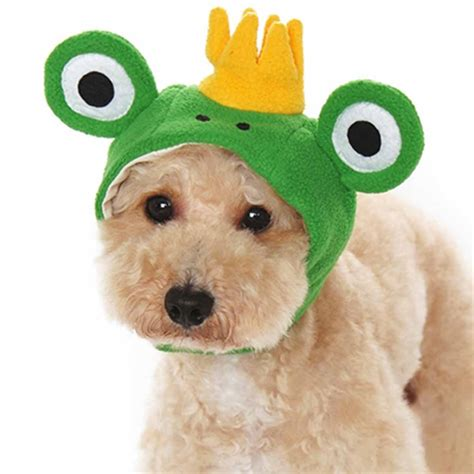 puppies with hats prince frog hat by dogo with same day shipping baxterboo