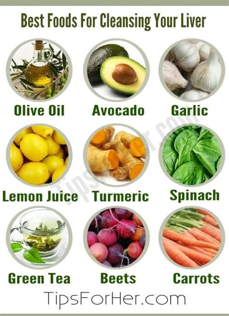 Best Vegetables That Detox Your Liver by Best Foods For Cleansing Your Liver Tips