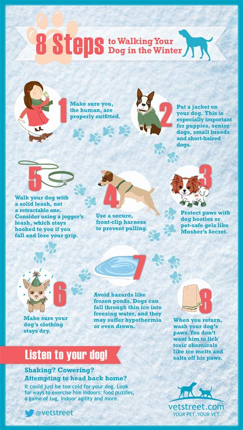 8 Tips For Winter by 8 Steps To Walking The In The Winter Infographic