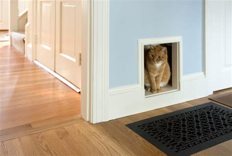 cat door for interior door custom cat door transitional hall other by amy mcfadden interior design