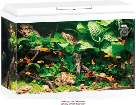Akuarium Semut aquaristic net juwel primo 70 led aquarium set wei 223