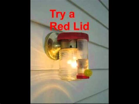 simple heated hummingbird feeder youtube