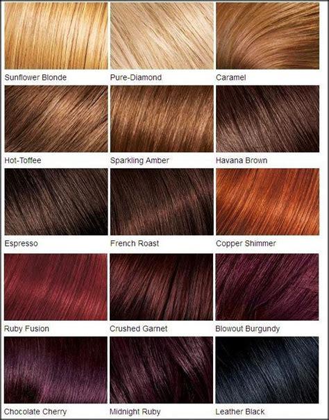 fructis hair color chart best 25 hair color charts ideas on pinterest garnier