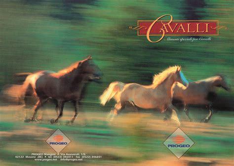 alimentazione per cavalli dothorse it il portale dei cavalli