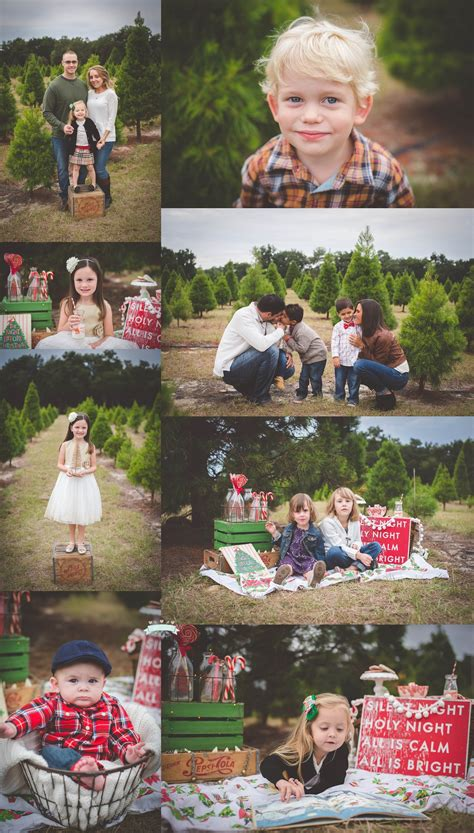 christmas tree farm mini sessions 2014 lake mary
