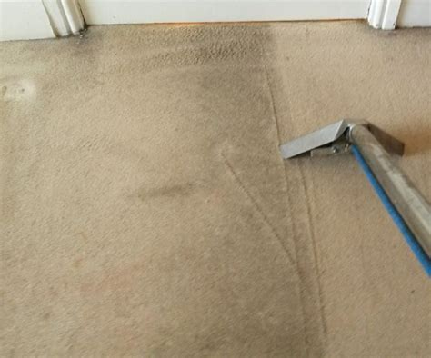 Sheffield Carpet Cleaner Carpet Cleaning Company In