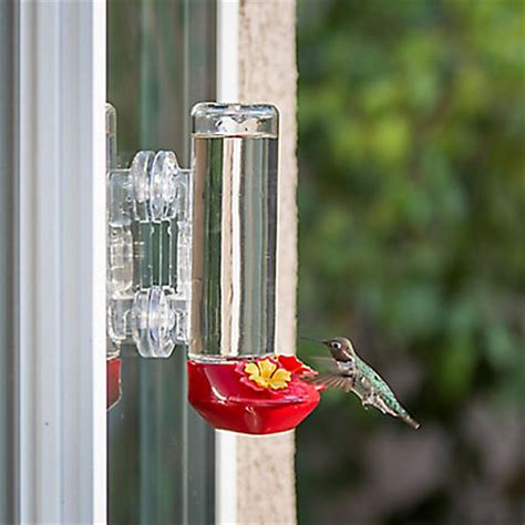 garden song 174 window mounted glass hummingbird feeder