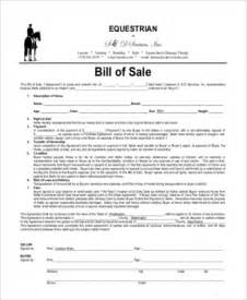 horse bill of sale samples 8 free documents in word pdf