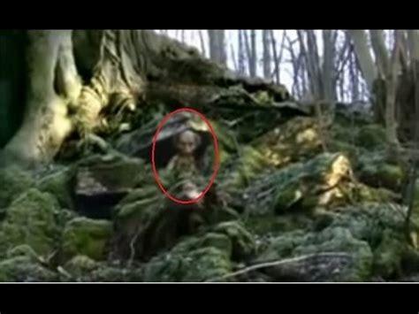 imagenes reales y imagenes virtuales videos de duendes reales youtube