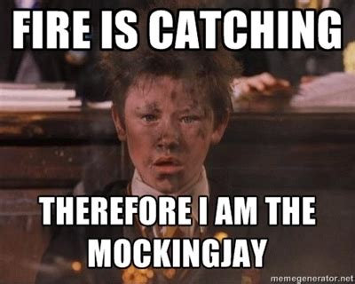 Catching Fire Meme - harry potter meme hunger games pictures to pin on