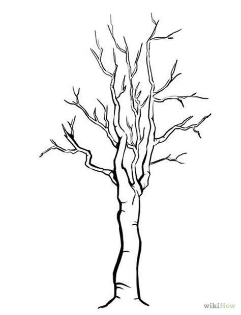 coloring pictures of tree trunks tree trunk with no leaves coloring pages