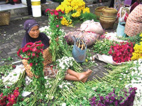 Jual Bibit Anggrek Yogyakarta pesona bandungan dan sekitarnya