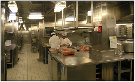 Kitchen On Cruise Ships Travel Cruise Ships Golden Princess D