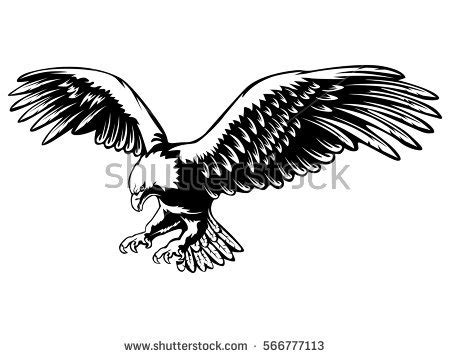 safe at hawk s landing badge of justice books eagle stock images royalty free images vectors