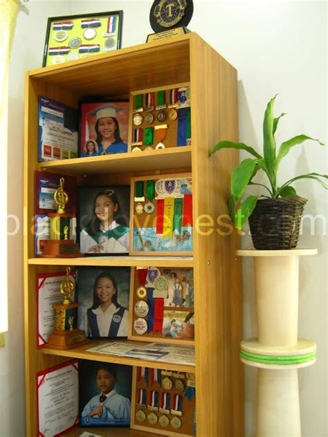 display cabinet for awards medals and trophies