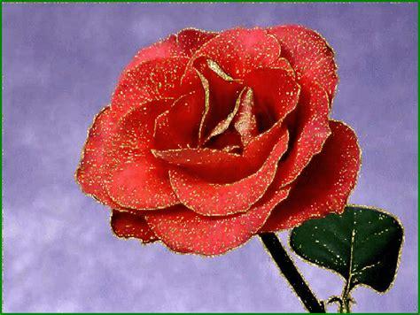 gifs hermosos gifs hermosos flores encontradas en la web