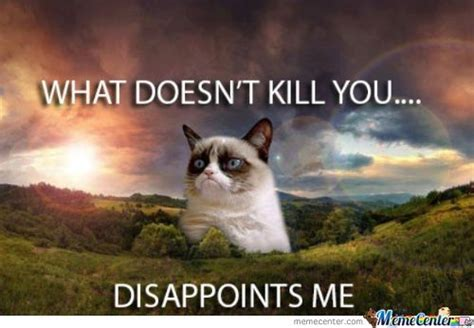 Tard The Grumpy Cat Meme - 10 tard cat memes you probably know already