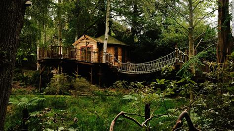 tree house is the treehouse the of sustainable living cnn
