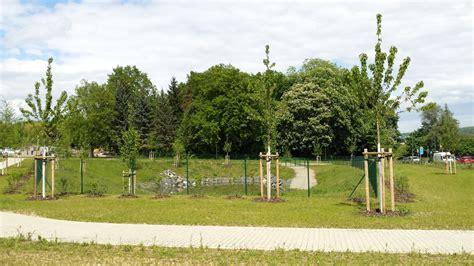 landschaftsbau mühlhausen g 246 ttingen mrvzn landschaftsbau m 252 hlhausen gmbh