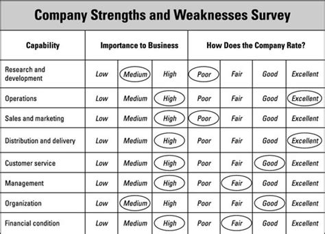 business plan template for dummies business planning considerations your capabilities