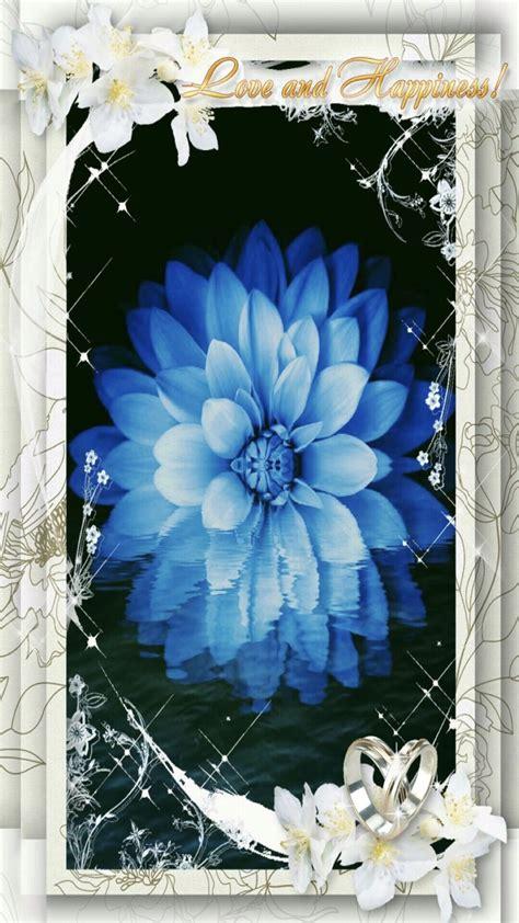 wallpaper biru muda bunga bunga biru wallpaper sc android