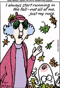 the morning funnys maxine funny s