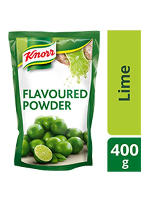 knorr lime seasoning powder 400g unilever food solutions