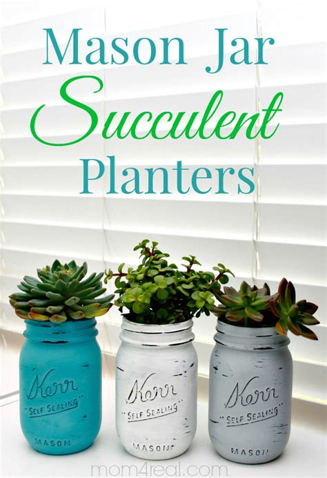 Indoor Succulent Planter by Jar Succulents Planters Indoor Gardening Idea