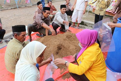 Fermentasi As Tahu Untuk Pakan Ternak pkmm 2016 permen 3 in 1 mengolah limbah cangkang kopi