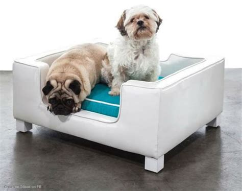 Contemporary Accessories For Your Pet by Amazing Beds For Pets Modern Home Decor