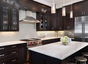 kitchen ideas dark cabinets 30 classy projects with dark kitchen cabinets home