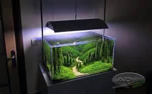 Fish Tank Aquascape Designs طراحی نگهداری خرید و فروش تجهیزات اکواریوم گیاهی گیاه