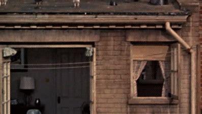 finestra sul cortile finestra sul cortile
