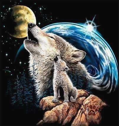 imagenes de la familia wolf lobos imagens e fotos para facebook pinterest whatsapp