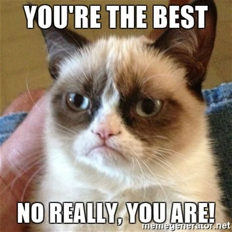 No Fucks Given Meme - you re the best no really you are grumpy cat meme