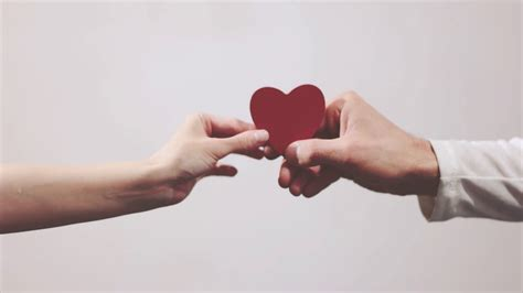 images of love hands couple in love hands giving heart shape symbol holiday